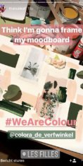 We are colour - colora - BOSS paints - Instastories THATSALEAF - June 2017