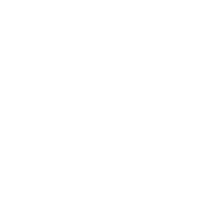 Logo VSV automodus